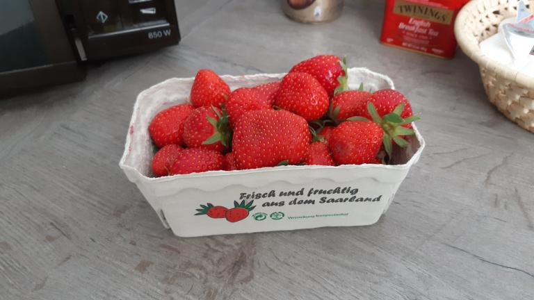 20200512_erdbeeren.png