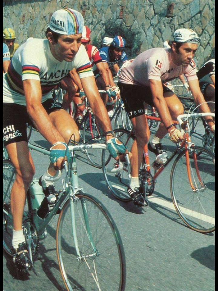 Gimondi und Merckx beim Giro 74.jpg