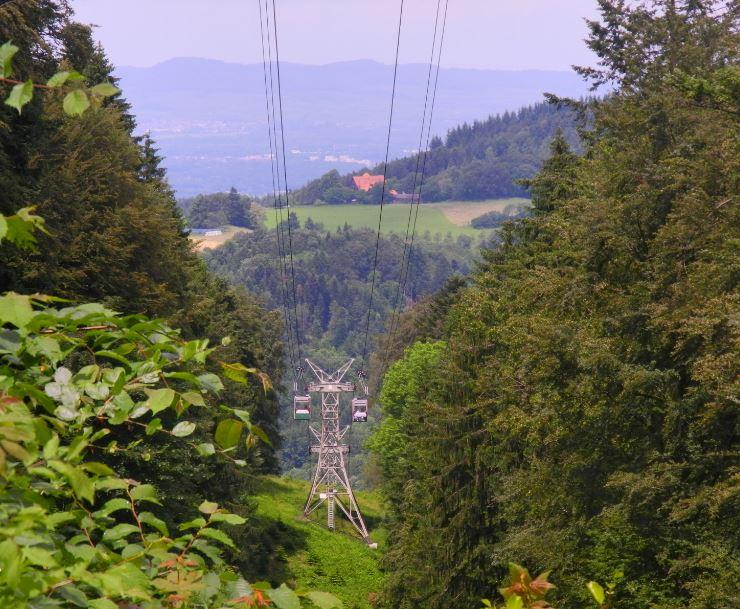 Schwarzwald4.JPG