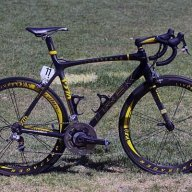 Livestrong2010