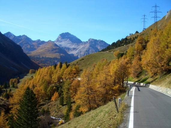 Albula_im_Herbst