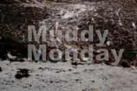 Muddy Monday: Wout van Aert ist auf WM Kurs – Sieg in Pontchateau